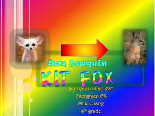 By: Karen Shao #24 Evergreen ES Mrs. Chang 4 th  grade