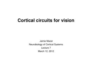 Cortical circuits for vision