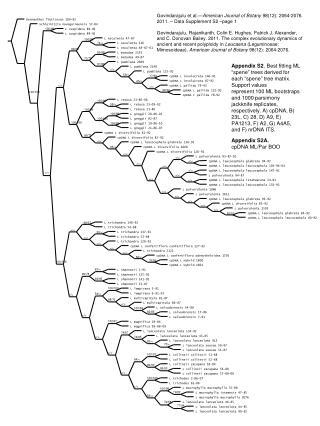 Appendix S2A. cpDNA ML/Par BOO