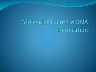 Molecular Events in DNA Replication