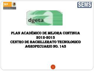 PLAN ACADÉMICO DE MEJORA CONTINUA 2012-2013