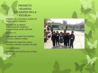 PROYECTO «PLANTAS COLGANTES EN LA ESCUELA»
