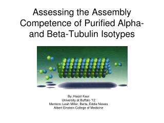 Assessing the Assembly Competence of Purified Alpha- and Beta- Tubulin Isotypes