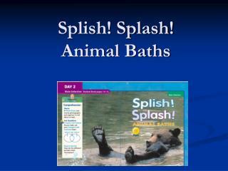 Splish Splash Animal Baths
