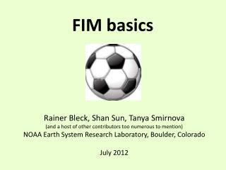 FIM basics