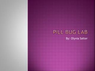 Pill Bug Lab