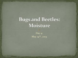 Bugs and  Beetles: Moisture