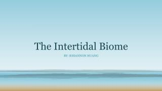 The Intertidal Biome