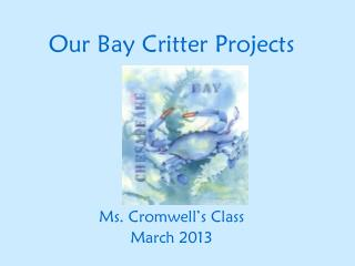 Our Bay Critter Projects
