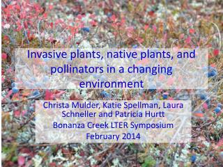 Invasive plants, native plants, and pollinators in a changing environment
