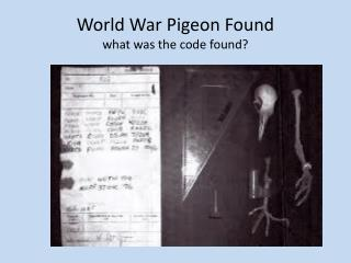 World War Pigeon Found what was the code found?