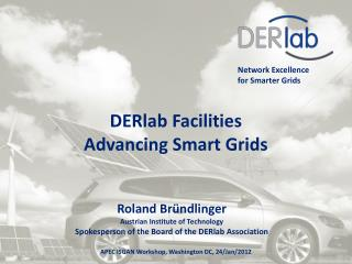 Network Excellence  for Smarter Grids