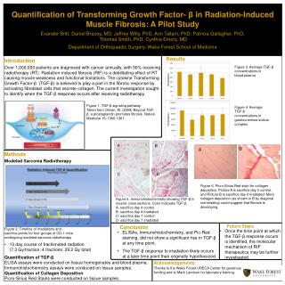 Quantification of Transforming Growth Factor-  β  in Radiation-Induced