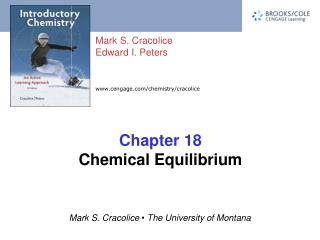 Chapter 18 Chemical Equilibrium