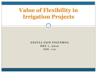Value of Flexibility in Irrigation Projects