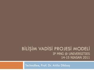 BİLİŞİM  VADİSİ PROJESİ MODELİ  IP  Mng  @  Universities 14-15 Niasan 2011