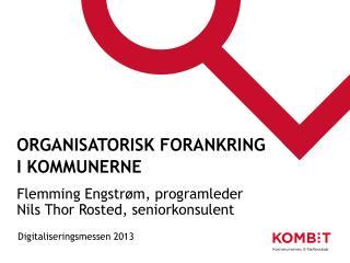 Organisatorisk forankring i kommunerne