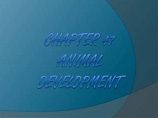 Chapter  47    Animal Development