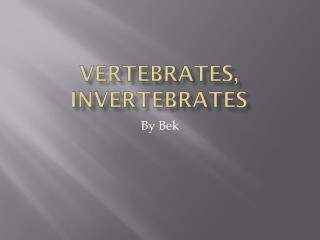 Vertebrates, Invertebrates