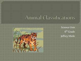 Animal Classifications