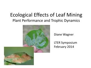 Ecological Effects of Leaf Mining Plant Performance and Trophic Dynamics
