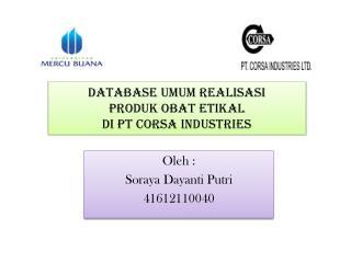 Database Umum Realisasi Produk Obat Etikal Di PT Corsa Industries
