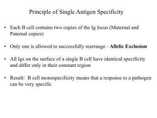 Principle of Single Antigen Specificity