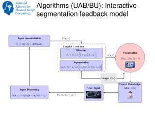 Algorithms (UAB/BU):  Interactive segmentation feedback model