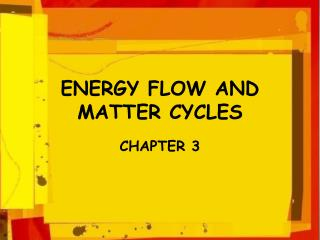 ENERGY FLOW AND                  MATTER CYCLES