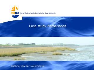 daphne.van.der.wal@nioz.nl