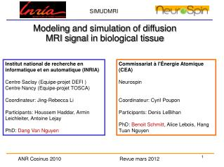 Modeling  and simulation  of diffusion MRI signal  in  biological tissue