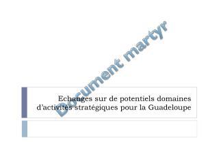 Echanges sur de potentiels domaines d'activités stratégiques pour la Guadeloupe