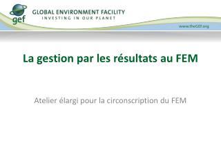 La gestion par les résultats au FEM