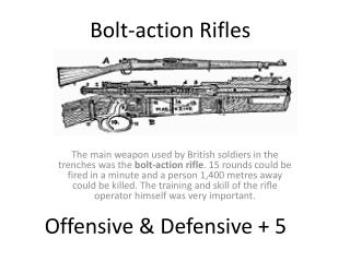 Bolt-action  Rifles