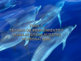 TEMA 2. TÉCNICA DE RENACIMIENTO Y TRABAJO SOBRE NUESTRA PERSONALIDAD