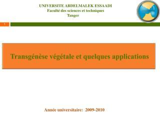 Transgénèse végétale et quelques applications