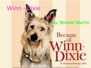 Winn - Dixie