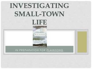 Investigating small-town life