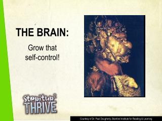 THE BRAIN: Grow that  self-control!