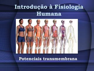 Introdu��o � Fisiologia Humana