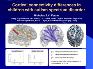 Cortical  connectivity  differences in children with autism spectrum disorder