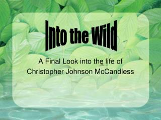 A Final Look into the life of Christopher Johnson McCandless