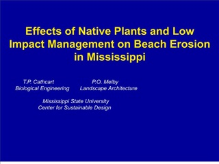 Effects of Native Plants and Low Impact Management on Beach Erosion in Mississippi