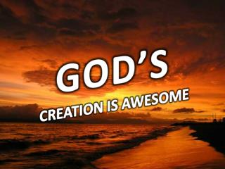 GOD'S  CREATION IS AWESOME