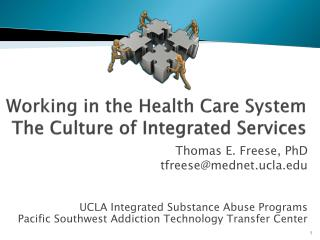 Working in the Health Care System The Culture of Integrated Services