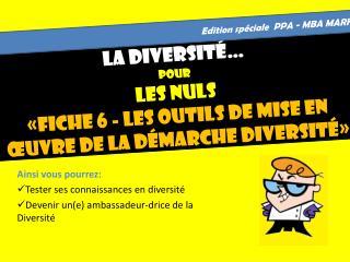 La Diversité… Pour LES NULS «fiche 6 - Les outils de mise en œuvre de la démarche diversité»