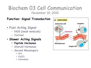 Biochem 03  Cell Communication November 10, 2010