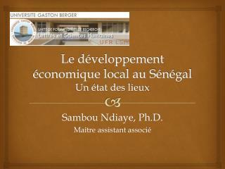 Le développement économique local au Sénégal Un état des lieux