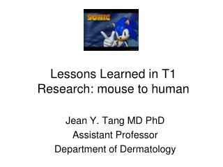 Lessons Learned in T1 Research: mouse to human