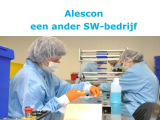 Alescon een ander  SW-bedrijf